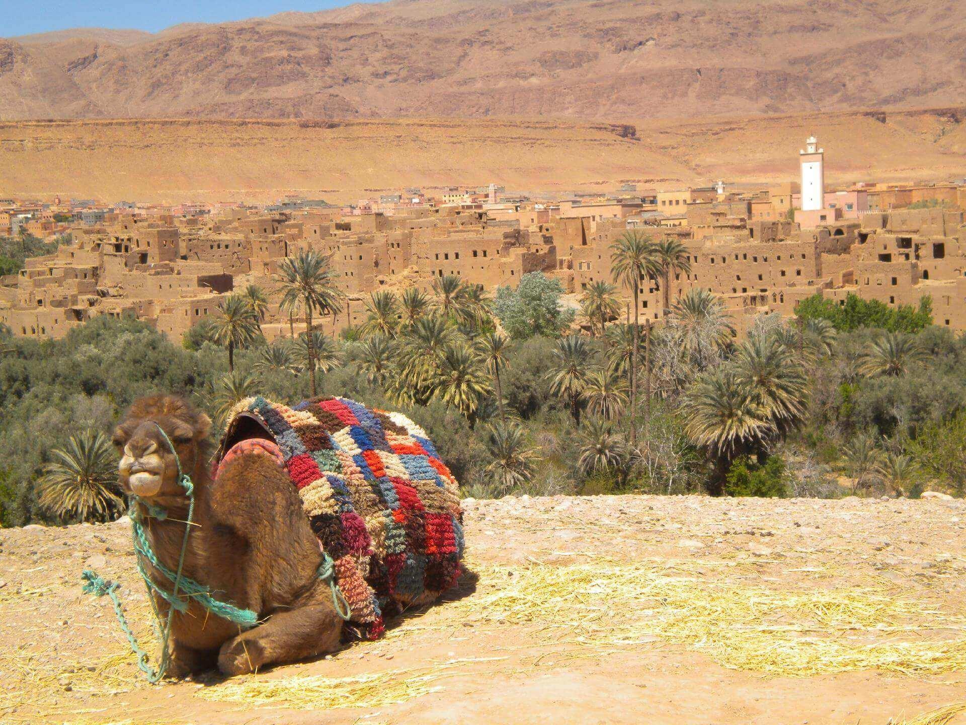 Marrakech - Ouarzazate