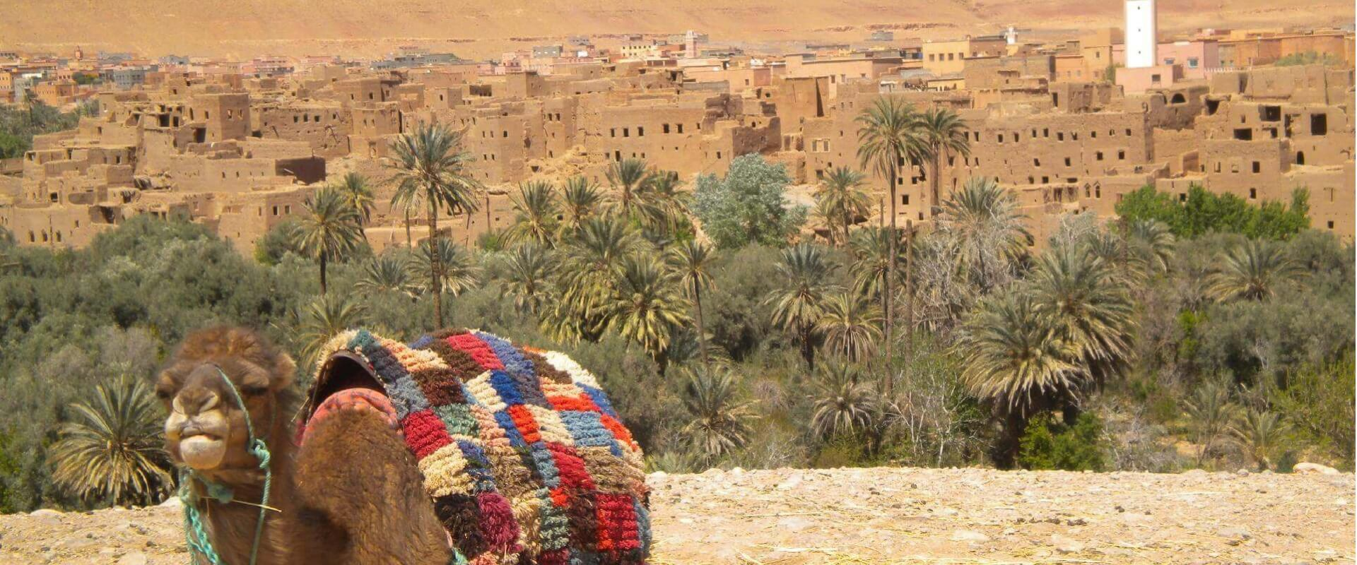 Tour in moto in Marocco