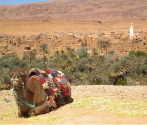 The Morocco Sensation Motorcycle Tour